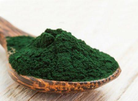 La Spirulina: come rendere forte il nostro sistema immunitario con un'alga!