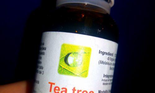 Il tea tree oil: proprietà ed usi di un olio eccezionale!