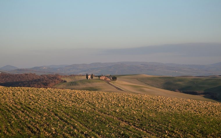 I grani antichi siciliani e la scoperta delle biodiversità