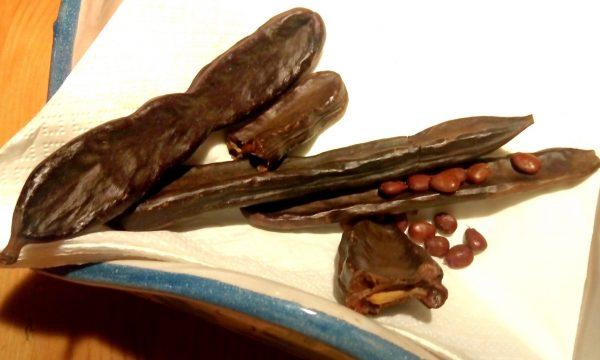 La Carruba: un frutto del sole dalle molte proprietà